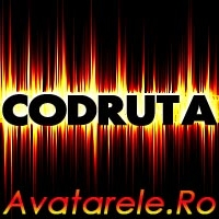 Imagini Codruta