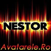 Imagini Nestor